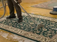 Area Rug Steam Cleaning